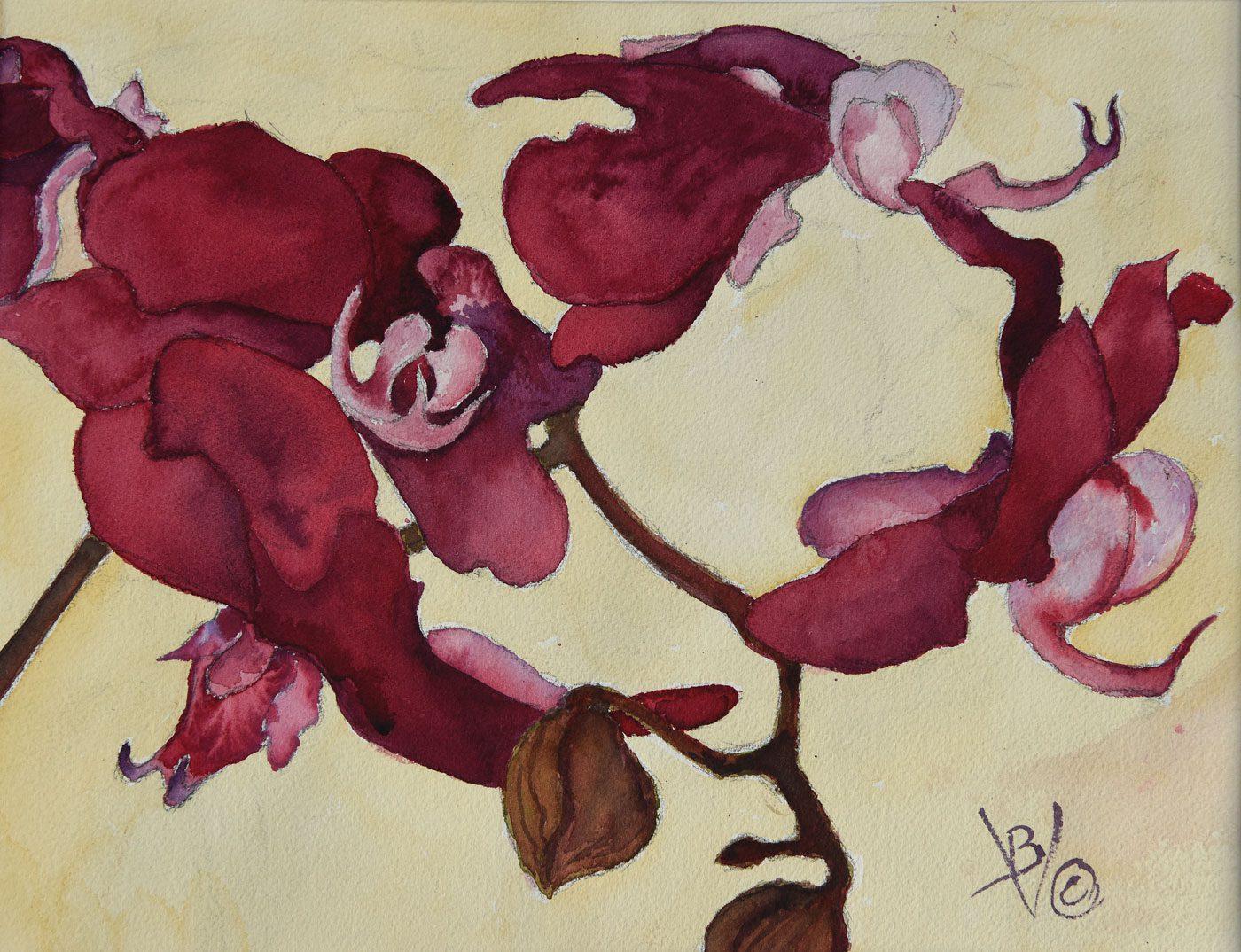 Bernard Vieille, Red Orchids