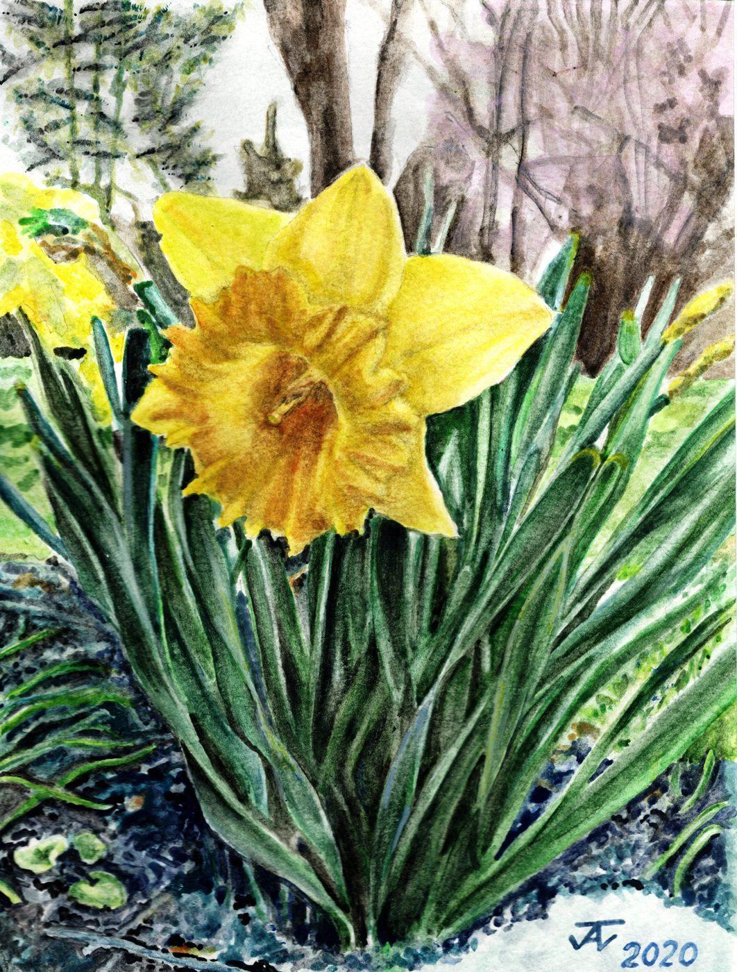 John Campbell, Spring...No matter what